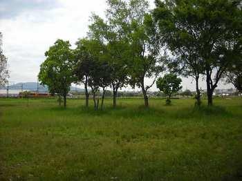 DSCN0231.jpg
